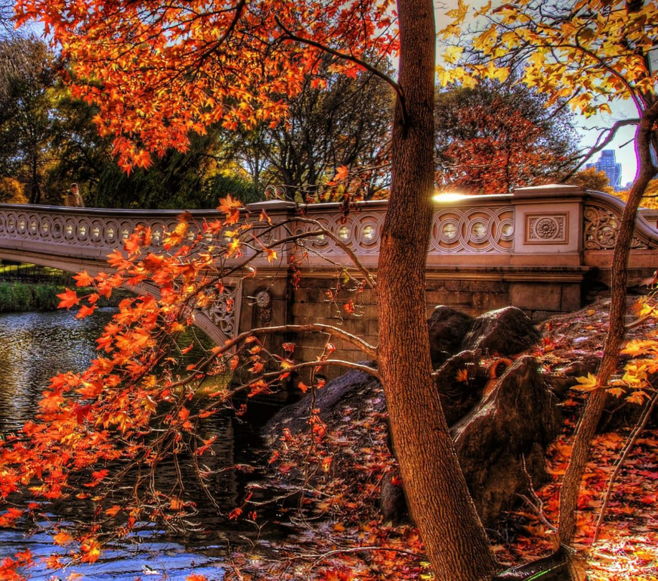 Autumn_bridge_1570x1776