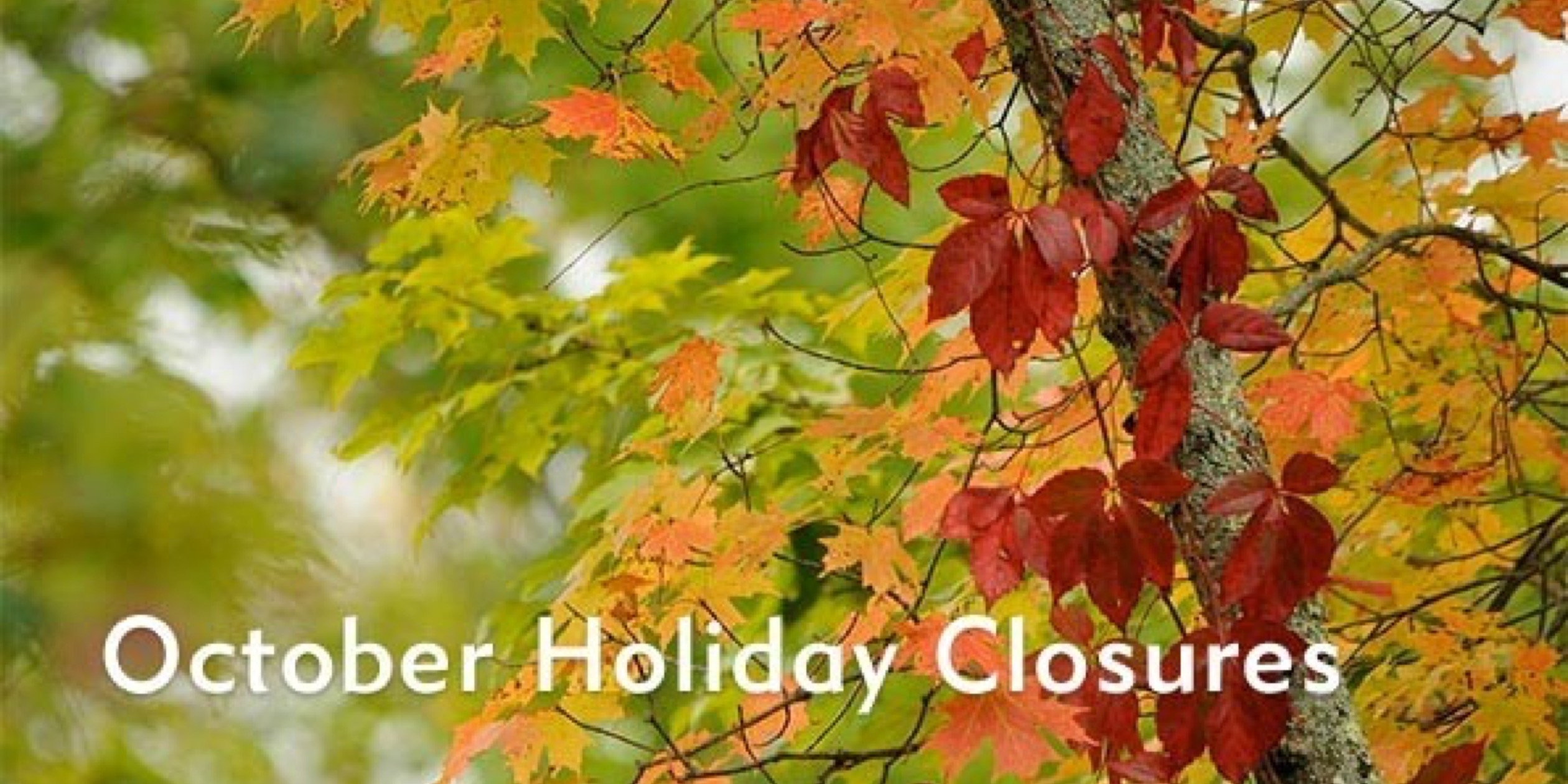 Click here for the October holiday schedule.
